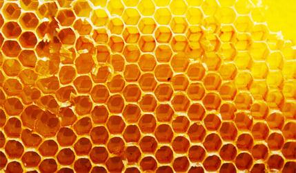 honeycomb (1) (1)